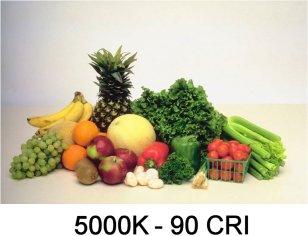 5000K - 90 CRI LED