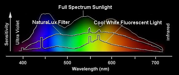 For Easier Comparison, We Have Superimposed The NaturaLux™ Filter, Cool  White Fluorescent And Full Spectrum Sunlight Curves.